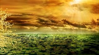 日光 残光 Morgenrot 池 気分 ロマンチックな 背景