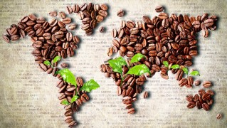 coffee_beans_in_the_shape_of_world_map-wide