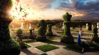 garden_of_chess-other