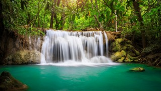 water_falling_inside_the_forest-wide