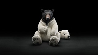 Black-Bear-with-White-Polar-Suit