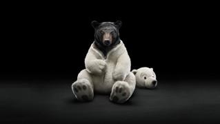 Black-Bear-with-White-Polar-Suit