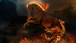 Horse-on-Fire-Art-Parining