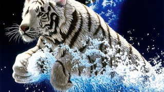 White-Tiger-Jump-Through-Water