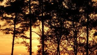 evening-sky-141797_1280