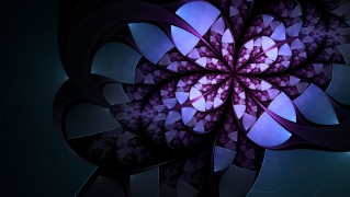 Abstract-Purple-Flower