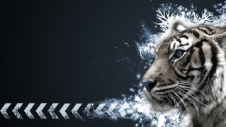 Abstract-Tiger-Portarit