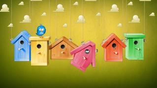 Birds-Houses