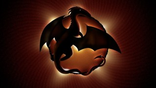 Dragon-Logo-and-Symbol-Design