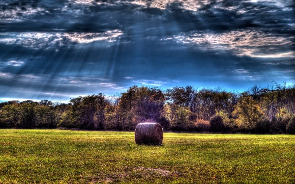 Farm-Field-With-Hay-Bales