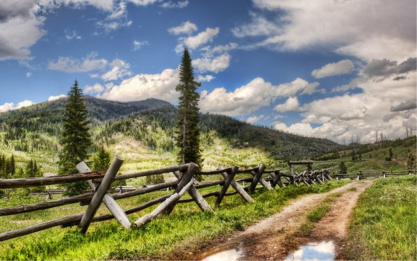 Farm-Road-with-Fence