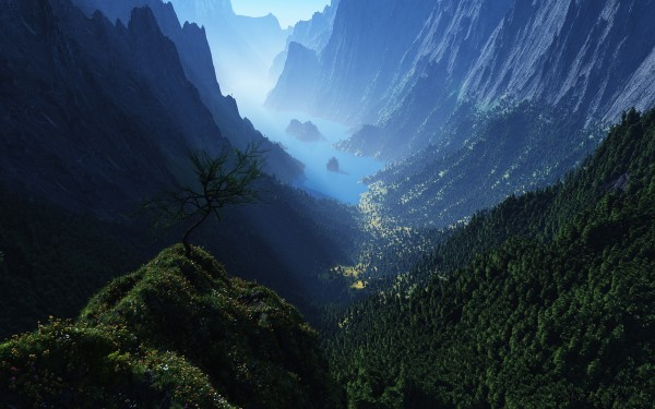 Foggy-Valley-Landscape