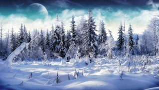 Forest-with-Snow-Dreamy-Landscape