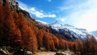 Gran-Paradiso-National-Park