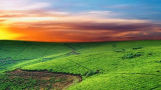 Green-Landscape-with-Colorful-Sunset-in-the-Sky