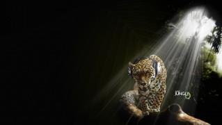 Happy-Leopard-Walking-with-Headphones