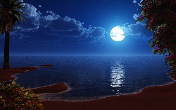 Island-Shore-with-Blue-Moon-in-the-Sky