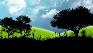 Silhouette-of-Trees-Against-Green-LAndscape