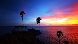 Sunset-Shore-with-Palm-Trees