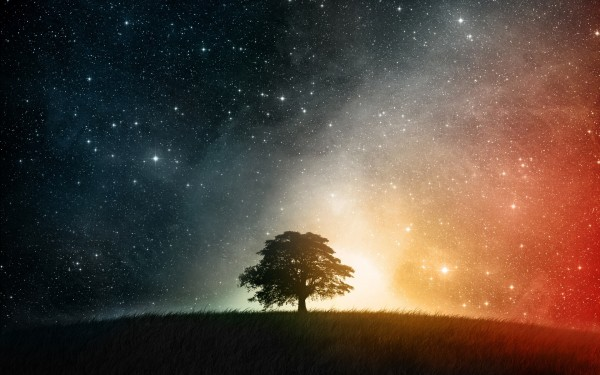 Tree-on-Top-of-Hill-Against-Colorful-Stars-Sky