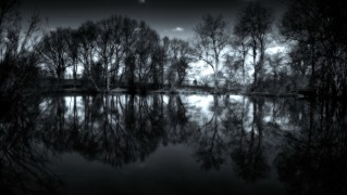 Trees-Reflection-on-Water-at-Night