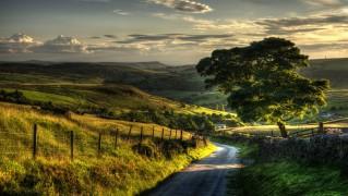 Village-Road-with-Nice-Landscape