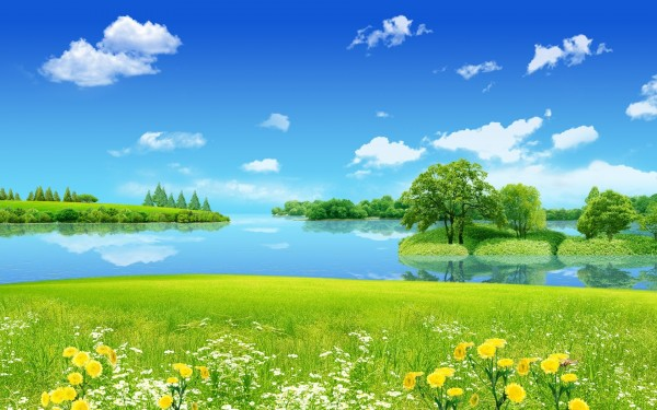 clear_flowers_field_landscape_with_lake_view-wide