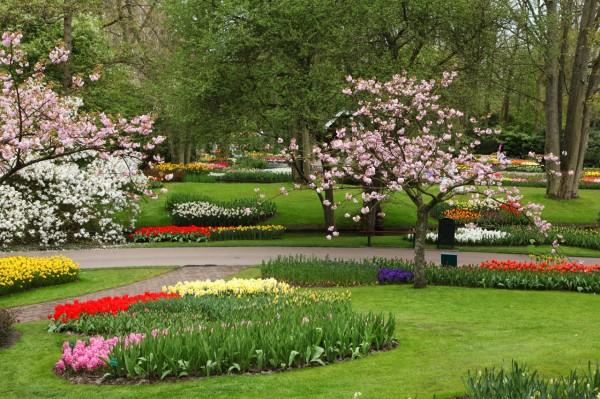 flower-garden-11281366700rMkE